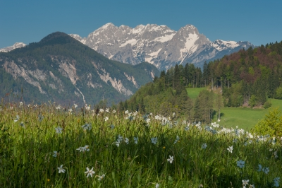 "Julijske Alpe so ""Top 10 regions in the Lonely Planet title ""Best In Travel 2018"""